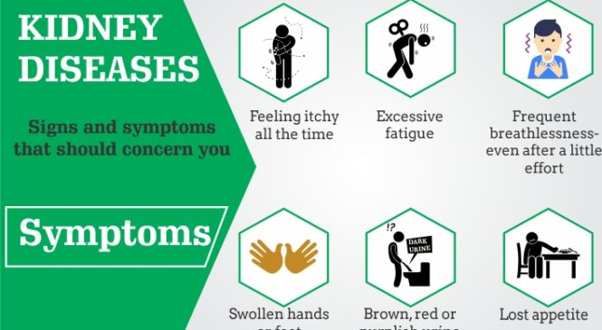 Kidney Diseases: Signs and symptoms